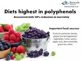 Polyphenols_3